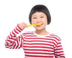 歯磨き コンクールF(Concool)