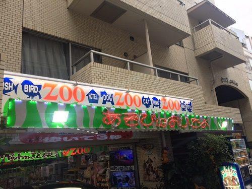 恵比寿 ペットショップ zoo1